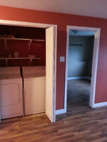 Do you need your basement renovated, give me a call today?