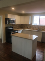 Handyman/Renovations