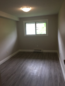 Room for Rent in Two Bedroom Apartment (Available Immediately)