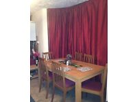 A single room for rent close to station/clean & tidy housemate required