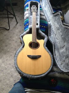 12 String Cutaway Acoustic/Electric Guitar with case