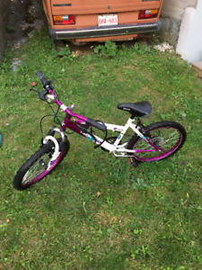 Medium sized kids 6 speed mountain bike.