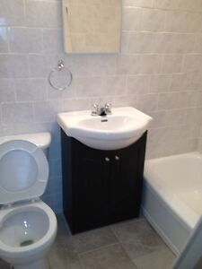 Large and bright 1 bedroom Ap. Dorval (1 Month free ) West Island Greater Montréal image 2