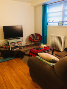 Large Bright 1 Bedroom-Pet Friendly-Close to SMU and Downtown