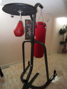 Boxing bag , speed bag and stand - Century Everlast New