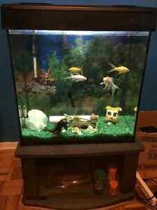 30 gallon & fish included London Ontario image 1