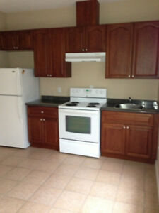 One bedroom bachelor suite-Sep 1