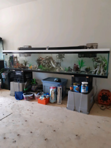 Aquariums for sale. Msg for pricing and info