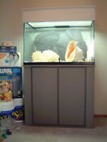 Aquarium And Supplies For Both Freshwater And Marine