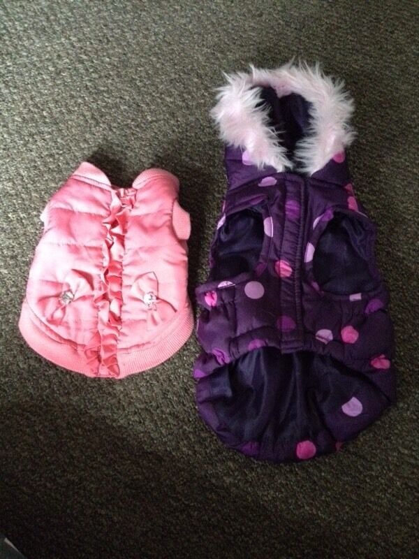 Xxs Small Pink Dog Clothes Coats From Pets At Home In Stanley