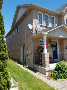 Two-bedroom Basement apartment for rent  (Vaughan)