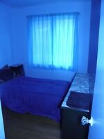 three furnished cleaned bedrooms available now