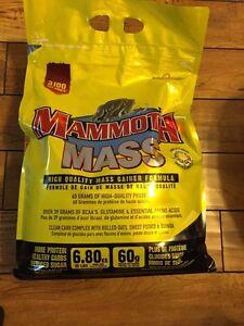 Brand new mass gainer