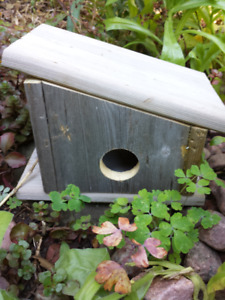 Wooden Mouse House .. NEW ..Catch mice outdoors ..