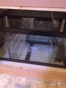 125 gallon saltwater reef tank system, NEW PRICE!!!  Kitchener / Waterloo Kitchener Area image 3