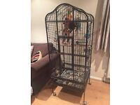 'Cage' Parot ar werth - Parrot cage for sale