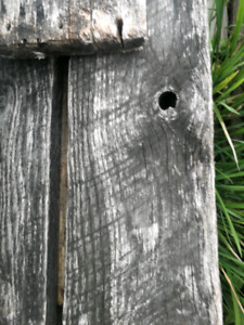 Weathered wood / boards