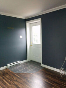 NEW PRICE - Large New / Pet friendly 2bdrm - Holyrood