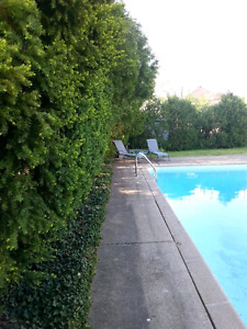 Large bright apartment with pool! July 1