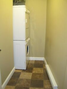 Beautiful downtown apartment  with PARKING ! St. John's Newfoundland image 9