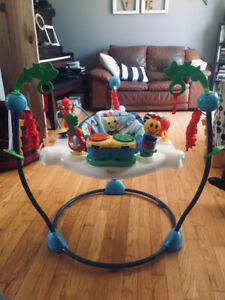 Perfect shape exersaucer