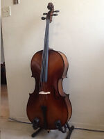 CELLO 4/4 Full Size Spruce / Maple - Stentor- with case,bow