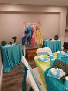 The perfect princess party with full set up and decor!