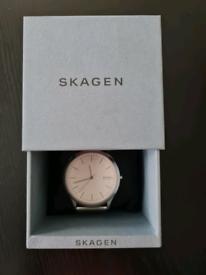 SKAGEN Denmark Silver-Tone Metal-Mesh watch new in box