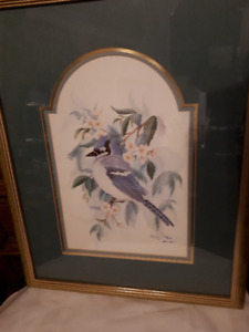 Don Kent signed and numbered Bluejay print