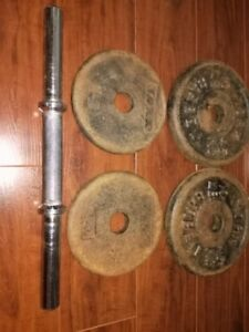 SOLID DUMBBELL ROD (no collars) + 30 lbs IRON PLATES - $30