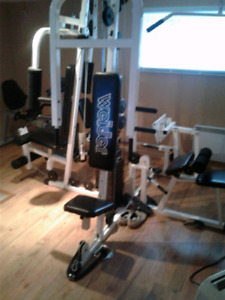 Gym multifonctions weider