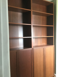 Billy Bookcases from IKEA with Height Extender and Doors