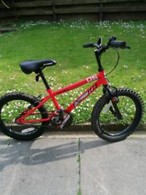 "Boys 18"" bicycle"