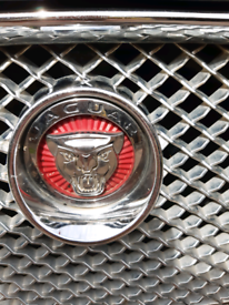 Jaguar xf front grille and badge