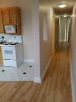 2 BEDROOM BASEMENT  APT. WHITNEY PIER