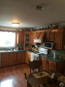 Kitchen Cabinets and Countertop $5000 ono