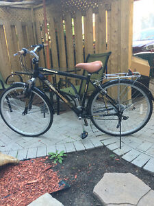 Adult Bike for selling