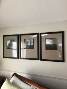 THREE   BLACK AND WHITE PHOTO  PICTURES