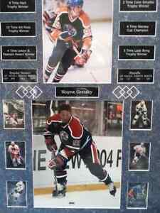 Wayne gretzky collectable photo with cards and broken records