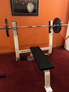 Selling Nothern Lights Bench Press w/ Bar & Weights