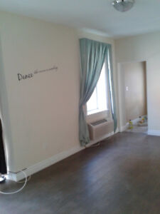 ***Large New 1 Bedroom Apartment***