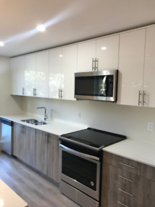 BRAND NEW LUXURY 1 BEDROOM AT THE BOSS DECEMBER JANUARY $1295