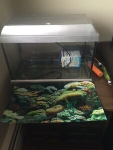 Fish tank and filter and lights and all assories