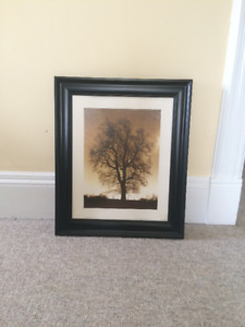 Framed Tree Picture, $15