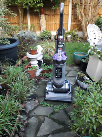 Animal DC33 Dyson Serviced Cleaned Very Good Suction / Condition Tools