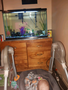55 gallon tall tank with everything . Rocks decorations heater f