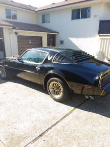 LOOKING FOR TRANS AM PROJECT CARS