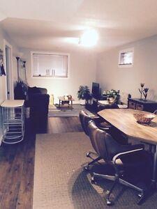 1 bedroom basement apartment Orangeville
