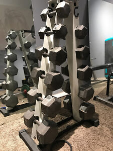 dumbells and rack
