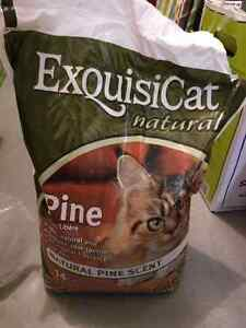 Pine Litter for cats